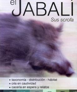 El jabali sus scrofa